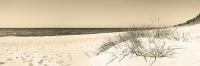8313-nordsee-sepia