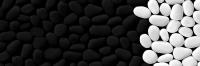 8351-schwarzweiss-2
