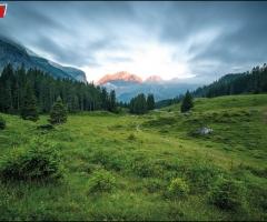 7131 Alpenmorgen