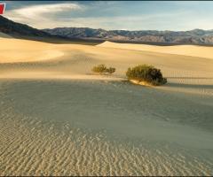 7120 Mesquite Dunes
