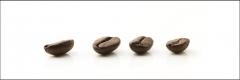8001 Kaffeebohne