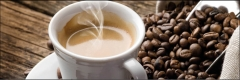 8004 Kaffeetasse