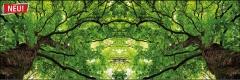 7801 Blätterwelt